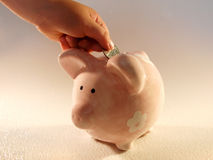 Piggy Bank Coin. A child makes a contribution to his piggy bank Stock Photos