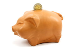 Piggy bank with coin Stock Image