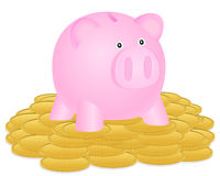 Piggy bank and coin Royalty Free Stock Photography