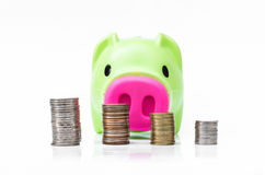 Piggy bank  and coin arranged in stack Stock Photos