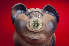Piggy bank with a coin of electronic crypto currency bitcoin. Stock Photography