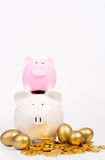 Piggy bank and coin,gold egg Royalty Free Stock Images