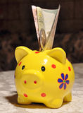 Piggy bank with a coin stuck Stock Images