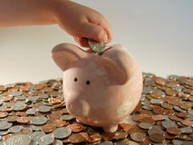 Piggy Bank Coins. A child makes a contribution to his piggy bank Royalty Free Stock Photo