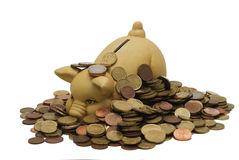 Piggy bank with coins. Stock Photo