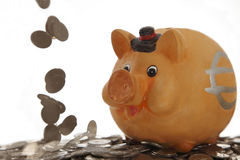 Piggy bank on coins. And coins falling down with motion blur on white background Stock Photography