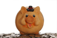 Piggy bank on coins. With white background Stock Photos