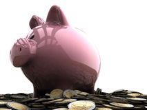 Piggy bank and coins Stock Photography