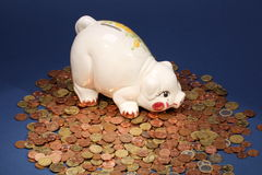 Piggy Bank on Coins. White piggy bank of stoneware on a big amount of Euro coins royalty free stock images