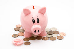 Piggy Bank and Coins. Isolated against White Royalty Free Stock Photos