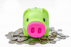 Piggy bank on coins background Stock Image