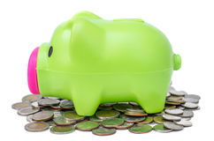Piggy bank on coins background Stock Images