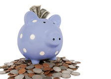 Piggy Bank Coins Cash Stock Photos