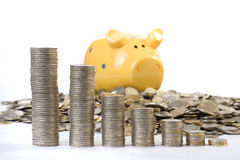 Piggy bank and coins chart Stock Images