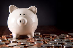 Piggy Bank & Coins Royalty Free Stock Photo
