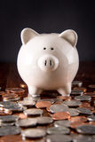 Piggy Bank & Coins royalty free stock image