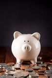 Piggy Bank & Coins royalty free stock photos
