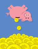 Piggy Bank Coins Falling Royalty Free Stock Image