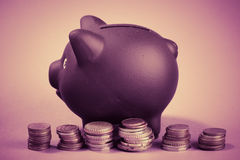 Piggy bank and coins home finances idea. Royalty Free Stock Image