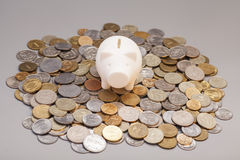 Piggy bank on coins Stock Photos