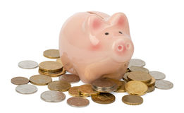 Piggy bank on coins Stock Photography