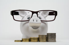 Piggy bank with coins Royalty Free Stock Photo