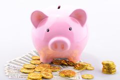 Piggy bank and coins and notes Royalty Free Stock Images