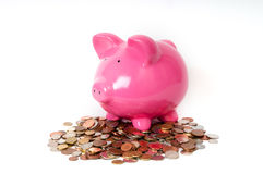 Piggy bank coins Stock Photos