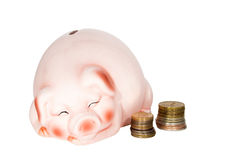 Piggy bank and coins Royalty Free Stock Image