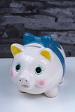 Piggy bank, coins savings, business concept Royalty Free Stock Photography