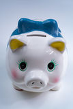 Piggy bank, coins savings, business concept Stock Photography