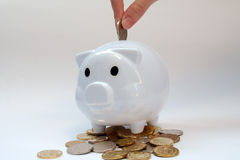 Piggy bank with coins. It is a white piggy bank with some coins Stock Images