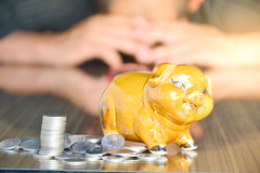 Piggy bank, coins and woman on wood desk stock image