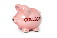 Piggy bank for college Stock Photography