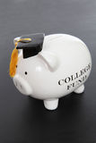 Piggy Bank for College Stock Images
