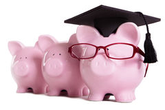 Piggy bank college student graduate graduation concept, education success, teaching. Graduating, piggybank with glasses Stock Photo