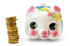 Piggy Bank with a column of coins Royalty Free Stock Photo