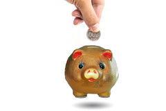 Piggy bank concept for business finance background. stock photo