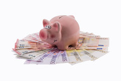 Piggy bank concept . Royalty Free Stock Photo