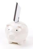 Piggy Bank and Credit Card Royalty Free Stock Photos
