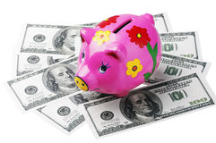 Piggy bank is a dollar. Isolated on white background Royalty Free Stock Images