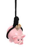 Piggy bank with dollar banknote and black rope Stock Image