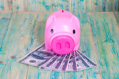 Piggy bank on dollar banknote Stock Image