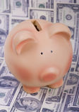 Piggy bank and dollar bills Stock Photo