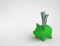 Piggy bank with dollar bills Stock Image