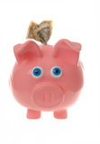 Piggy bank with dollar bills; money concept. This stock photo shows a piggy bank with money Stock Image