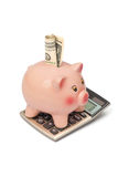 Piggy bank with dollar on calculator. Piggy bank, money and calculator on white background Stock Photo