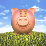 Piggy Bank Dollar. Piggy bank with eyes money sign on the grass Stock Photography