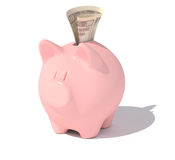 Piggy bank with a dollar note. Royalty Free Stock Images