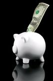 Piggy Bank Dollar reflected Stock Photography